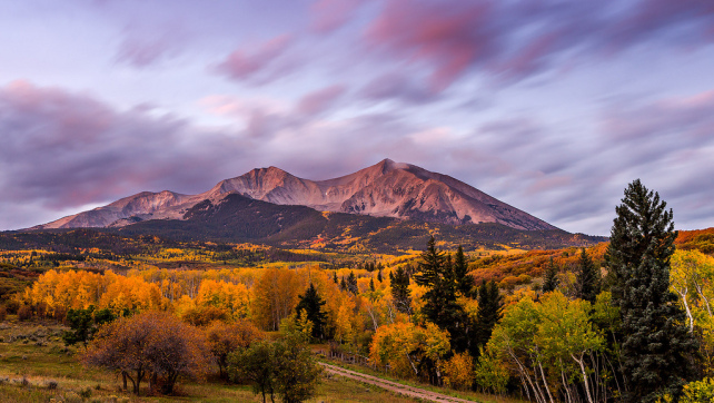 Fall Colors in the Elk Mountains