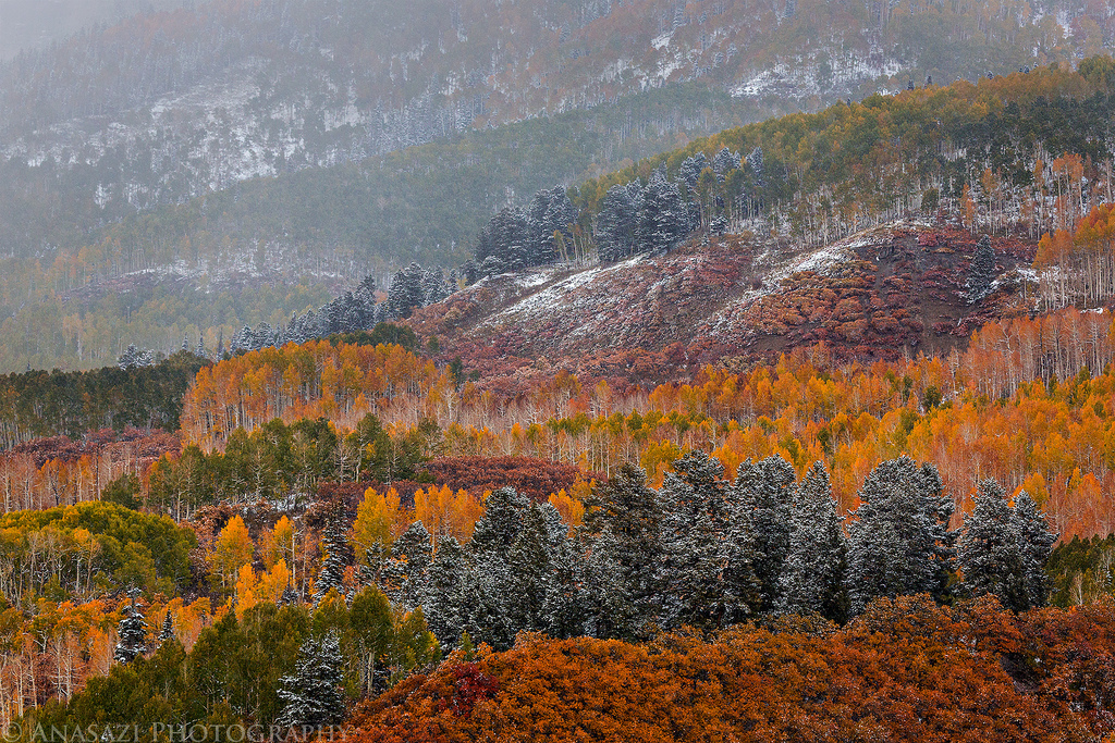 Fall Colors on Owl Creek Pass