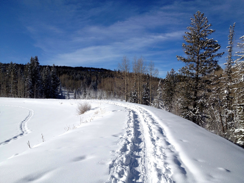 Christmas Eve Snowshoeing