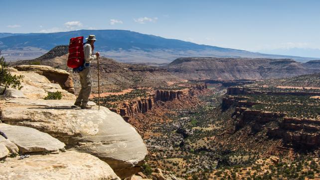 Backpacking Big Dominguez Canyon
