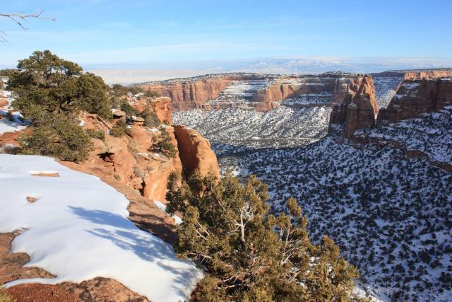 Canyon Rim & Window Rock Trails