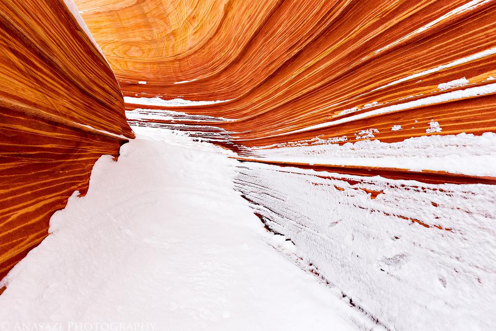 Wave Winter Wonderland