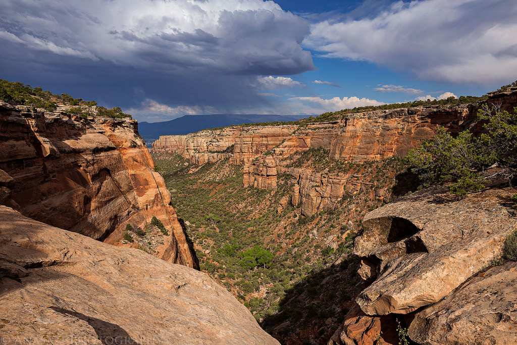 Between Red & Ute Canyons