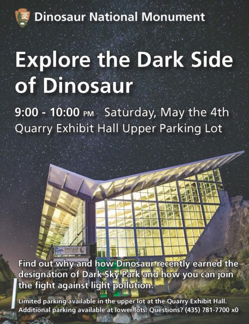Dinosaur Night Sky 2019