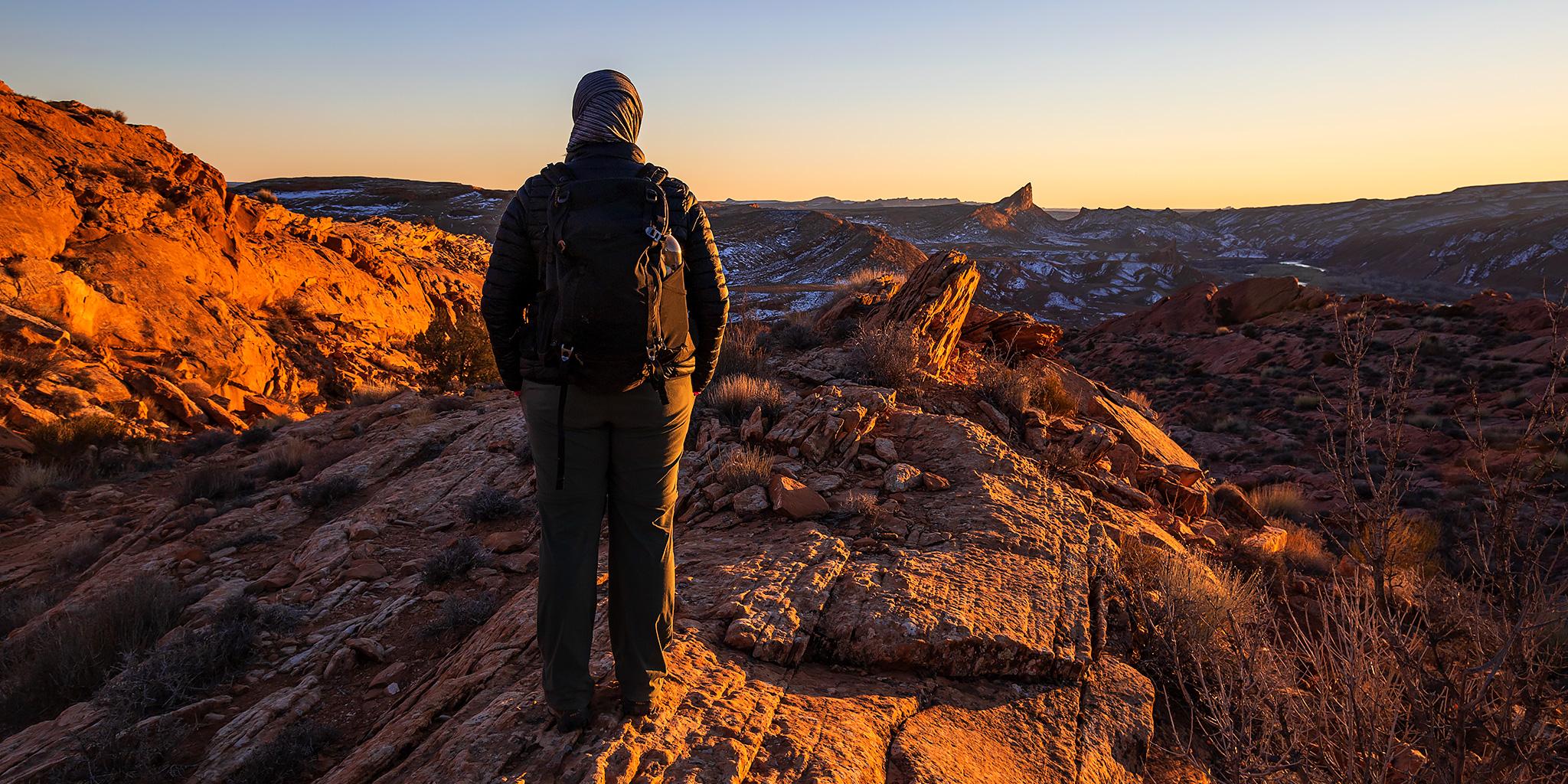 Backbone of the Earth: Comb Ridge