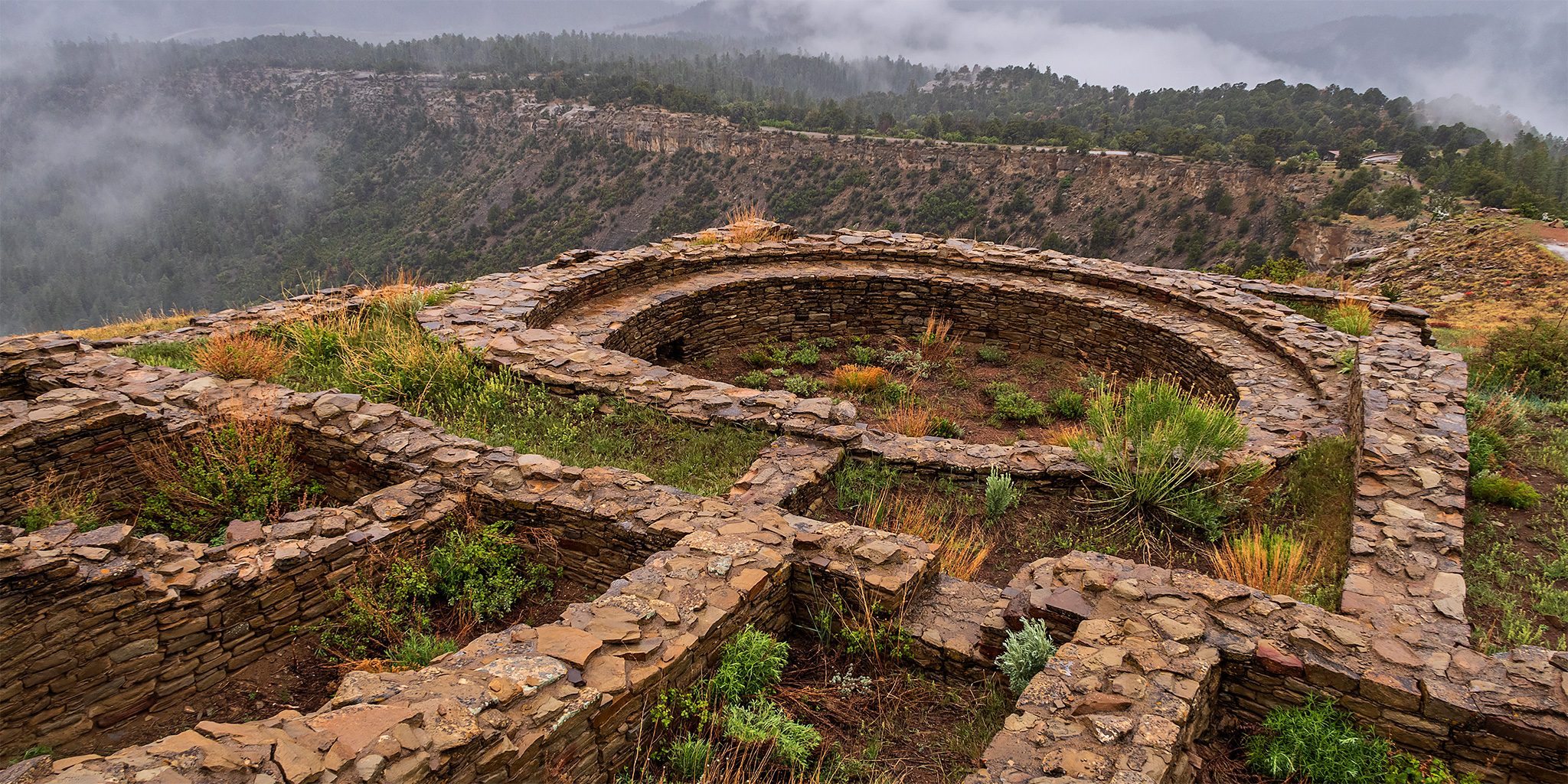 The Chaco Phenomenon of the San Juan Basin